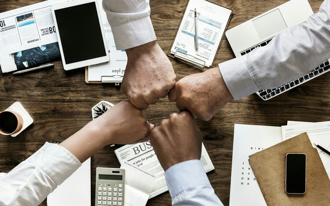 Business meetings & Networking